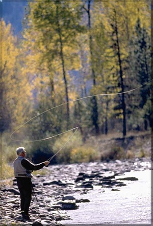 Fly Fishing New Mexico