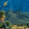 New Mexico Vacation