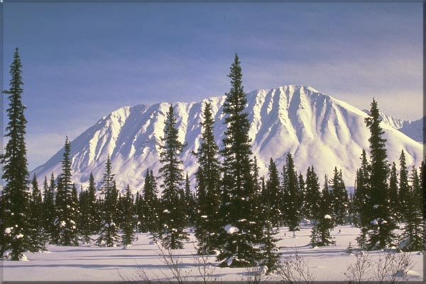 New Mexico Skiing