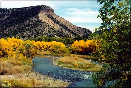 Fly fishing new mexico new mexico outdoor sports guide for Fishing new mexico