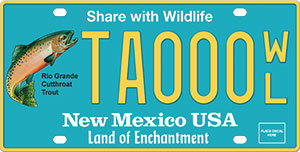 New Mexico Cutthroat Trout