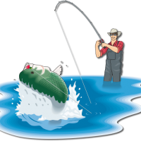 New Mexico Fly Fishing