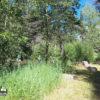 Rio Pueblo Trout Fishing Public Access