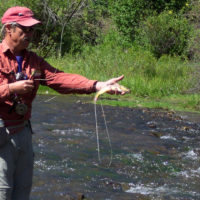 Rio Cimarron Trout Fly Fishing Public Access