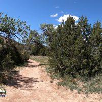 Hiking Galesteo Basin Preserve - Cottonwood Trailhead
