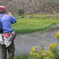 New Mexico Fly Fishing Guide Ed Adams